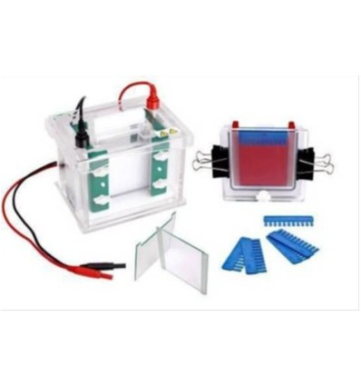 miniQuad Gel Electrophoresis Cell Complete, BIOpHROETICS