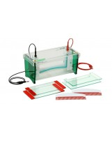 TV200 Wide mini-Gel Electrophoresis System, Scie-plas