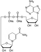 β-Nicotinamide Adenine Dinucleotide Reduced Na2-Salt, research grade, CAS 606-68-8, SERVA