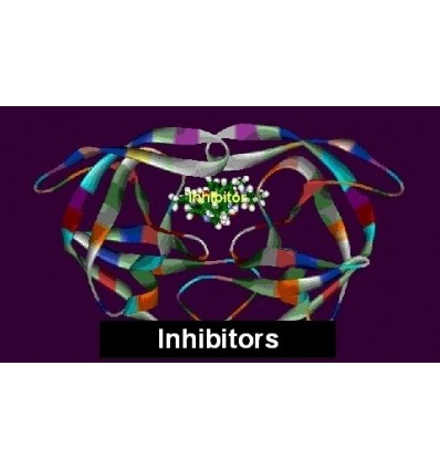 Protease-Inhibitor Mix FY, Serva