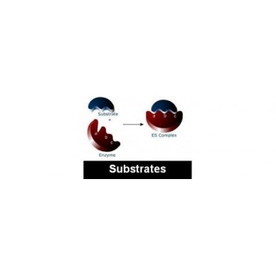 BCIP/NBT ready-to-use substrate, Serva