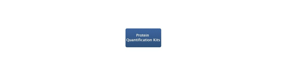 Protein Quantification Kits