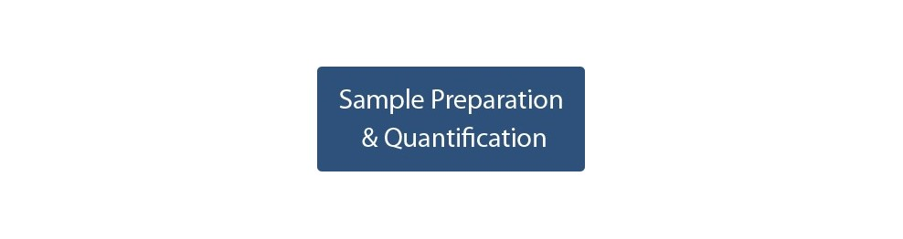 Sample Preparation & Quantification