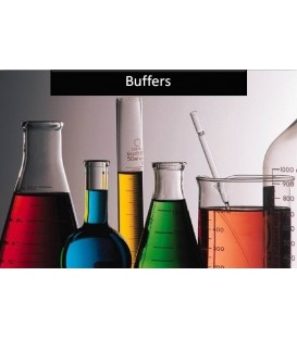 Towbin Buffer for Western Blotting 10x concentrate, SERVA