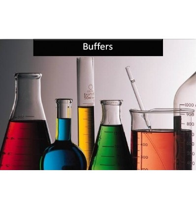 IEF Sample Buffer (2x) sterile filtered, SERVA