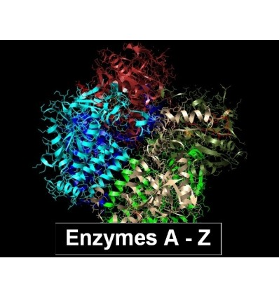 Lysozyme from chicken egg white min. 100 000 units/mg, CAS 12650-88-3, Serva